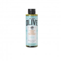OLIVE Shamp brillance chvx normaux 250ml
